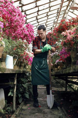 Handsome male gardener in apron and green gloves with a big shovel, posing and looking away in greenhouse