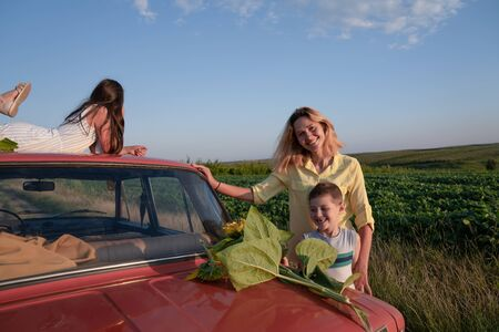 Happy smiling family, mom in yellow shirt with her son in grey t-shirts is standing near red retro car, boy is looking at the sunflowers, her daughter in blue striped dress lies on the roof of the car and looking into the distance