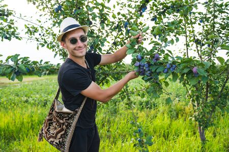 Happy young man in white hat and sunglasses, with national shoulder bag holding in hands a branch with many plums smiling and looking at the camera Stockfoto