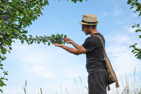 Side view photo of young man in hat and sunglasses with national shoulder bag that standing near the plums tree and holding branch in one hand other hand with open palm, blue sky on the background Stockfoto