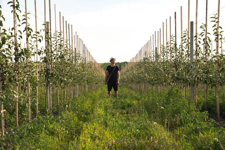 Farmer in black t-short and shorts in white hat standing among his apples garden and looking away