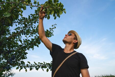 Young man in hat and sunglasses reaching for a tree and looking up, blue sky on the background Stockfoto