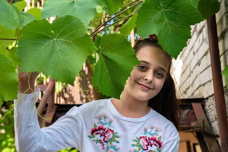 Cute little girl in white t-shirt peeking out of vine branches, outdoor photo Stock fotó
