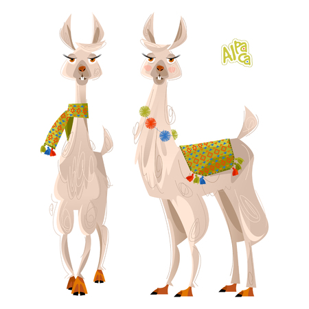 Two lamas. Alpaca. Vector illustration. Çizim