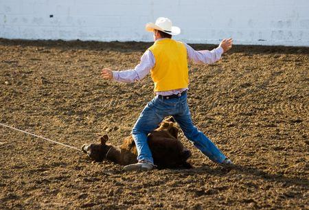 Serie del rodeo Foto de archivo - 428501