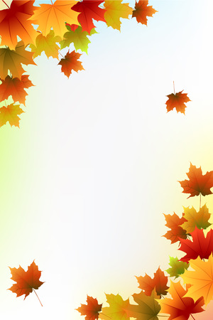 Beautiful Fall Background