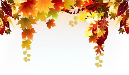 harvest festival: Beautiful Fall Background  Illustration