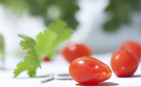 チェリー トマトとコリアンダーの白い背景の上 写真素材