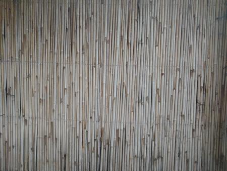 小さなサンドライト竹壁 写真素材 - 73594650