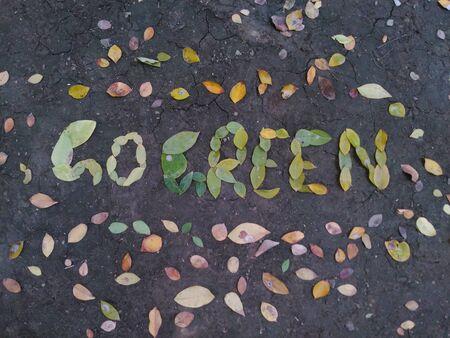 地面に葉で書かれた緑を移動します。 写真素材 - 72816413