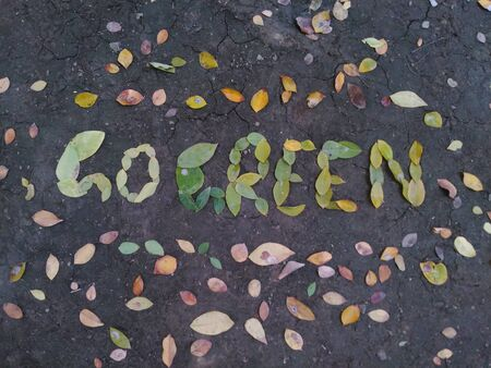 Go Green written with leaves on ground