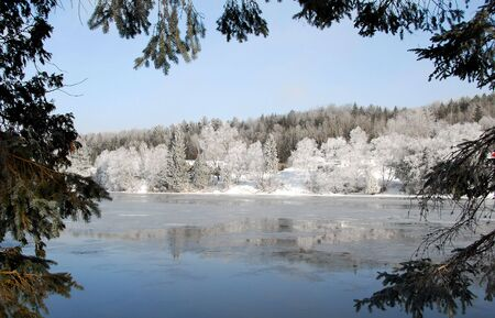 A frozen river naturally framed by evergreen branches Stock Photo - 2506275