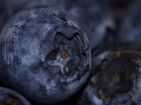 Close macro picture of some fresh blueberries