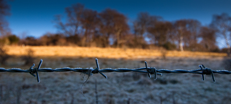 Delicate crystals of frost decorate a barbed wire fence as the Sun creeps across the field behind.