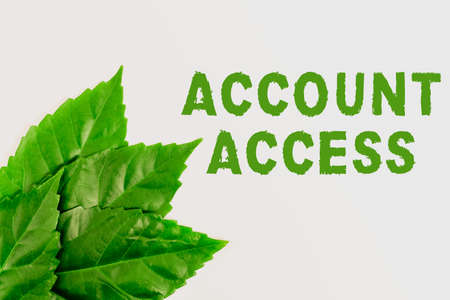 Handwriting text Account Access. Concept meaning full privilege for the owners to manage their an individualal data Nature Conservation Ideas, New Environmental Preservation Plans