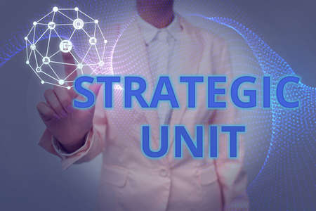 Conceptual caption Strategic Unit. Concept meaning profit center focused on product offering and market segment. Lady In Uniform Holding Tablet In Hand Virtually Tapping Futuristic Tech.