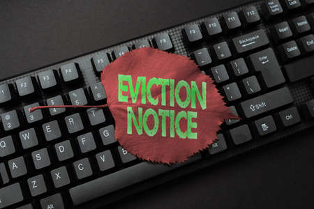 Writing displaying text Eviction Notice. Business showcase an advance notice that someone must leave a property Inputting Important Informations Online, Typing Funny Internet Blog