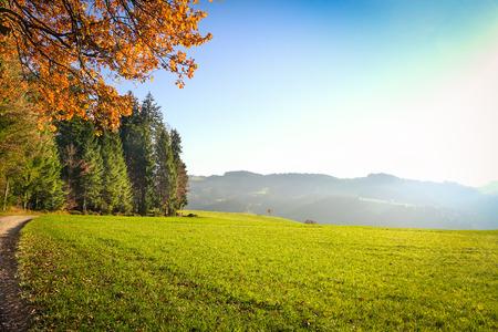 Horské údolí během slunečného dne ve Švýcarsku - Přírodní letní krajina v Langnau Emmental, Bernská oblast Reklamní fotografie