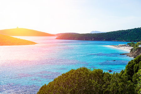 Panoramic view of paradise beach with white sand and multicolor sea - Mediterranean italian scrub next wild nature sea with sunshine - Turredda Sardinia island - Vacation concept