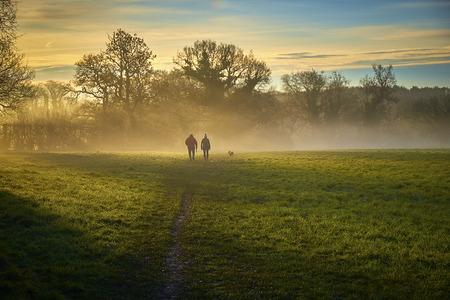 dog walkers in misty morning sun