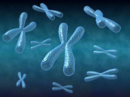 Chromosome 3d Render