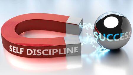 Selbstdisziplin hilft, Erfolg zu erzielen - dargestellt als Wort Selbstdisziplin und ein Magnet, um zu symbolisieren, dass Selbstdisziplin Erfolg im Leben und im Geschäft anzieht, 3D-Illustration
