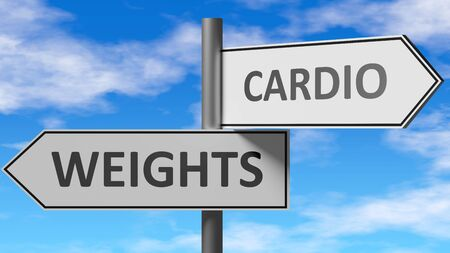 Weights and cardio as a choice - pictured as words Weights, cardio on road signs to show that when a person makes decision he can choose either Weights or cardio as an option, 3d illustration 스톡 콘텐츠