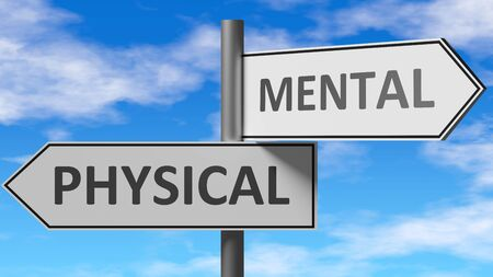 Physical and mental as a choice - pictured as words Physical, mental on road signs to show that when a person makes decision he can choose either Physical or mental as an option, 3d illustration