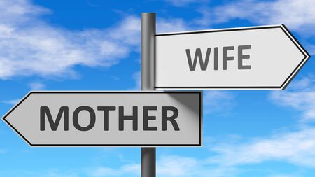 Mother and wife as a choice - pictured as words Mother, wife on road signs to show that when a person makes decision he can choose either Mother or wife as an option, 3d illustration