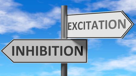 Inhibition and excitation as a choice, pictured as words Inhibition, excitation on road signs to show that when a person makes decision he can choose either option, 3d illustration 版權商用圖片