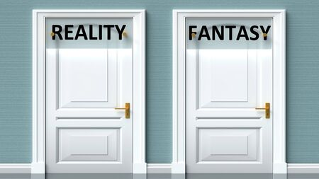 Reality and fantasy as a choice - pictured as words Reality, fantasy on doors to show that Reality and fantasy are opposite options while making decision, 3d illustration