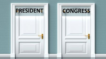 President and congress as a choice - pictured as words President, congress on doors to show that President and congress are opposite options while making decision, 3d illustration 写真素材