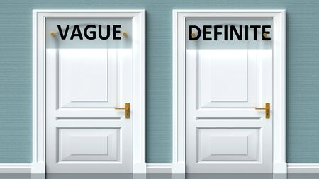 Vague and definite as a choice - pictured as words Vague, definite on doors to show that Vague and definite are opposite options while making decision, 3d illustration