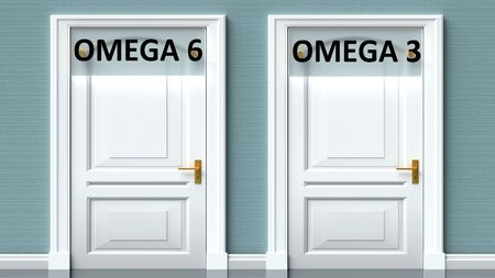 Omega 6 and omega 3 as a choice - pictured as words Omega 6, omega 3 on doors to show that Omega 6 and omega 3 are opposite options while making decision, 3d illustration 写真素材