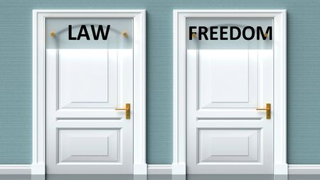 Law and freedom as a choice - pictured as words Law, freedom on doors to show that Law and freedom are opposite options while making decision, 3d illustration