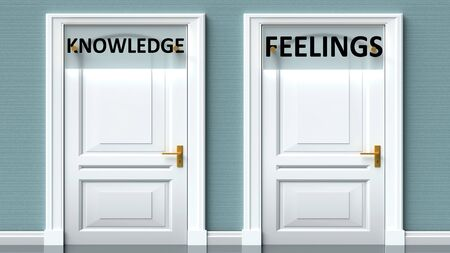 Knowledge and feelings as a choice - pictured as words Knowledge, feelings on doors to show that Knowledge and feelings are opposite options while making decision, 3d illustration