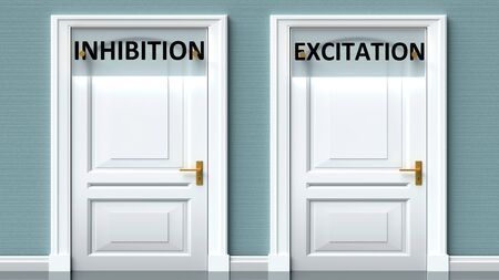 Inhibition and excitation as a choice - pictured as words Inhibition, excitation on doors to show that Inhibition and excitation are opposite options while making decision, 3d illustration 写真素材