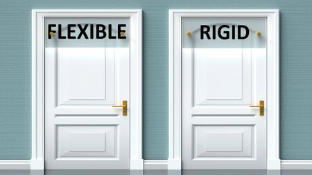 Flexible and rigid as a choice - pictured as words Flexible, rigid on doors to show that Flexible and rigid are opposite options while making decision, 3d illustration