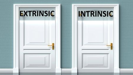 Extrinsic and intrinsic as a choice - pictured as words Extrinsic, intrinsic on doors to show that Extrinsic and intrinsic are opposite options while making decision, 3d illustration