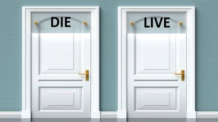 Die and live as a choice - pictured as words Die, live on doors to show that Die and live are opposite options while making decision, 3d illustration