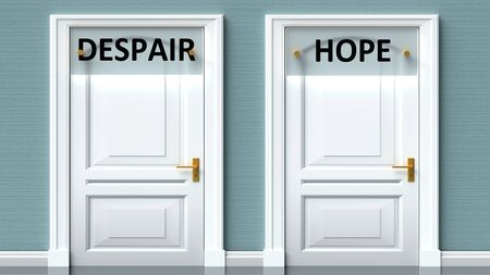 Despair and hope as a choice - pictured as words Despair, hope on doors to show that Despair and hope are opposite options while making decision, 3d illustration