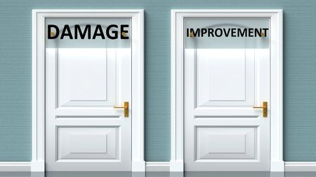 Damage and improvement as a choice - pictured as words Damage, improvement on doors to show that Damage and improvement are opposite options while making decision, 3d illustration