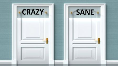 Crazy and sane as a choice - pictured as words Crazy, sane on doors to show that Crazy and sane are opposite options while making decision, 3d illustration 写真素材