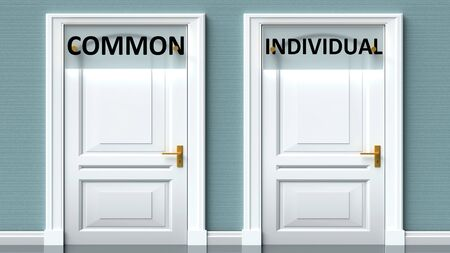 Common and individual as a choice - pictured as words Common, individual on doors to show that Common and individual are opposite options while making decision, 3d illustration