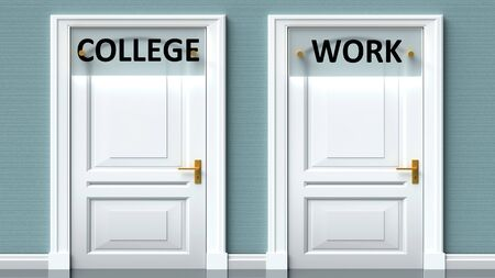 College and work as a choice - pictured as words College, work on doors to show that College and work are opposite options while making decision, 3d illustration