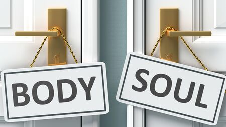Body or soul as a choice in life - pictured as words Body, soul on doors to show that Body and soul are different options to choose from, 3d illustration 版權商用圖片