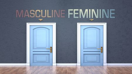 Masculine and feminine as a choice - pictured as words Masculine, feminine on doors to show that Masculine and feminine are opposite options while making decision, 3d illustration