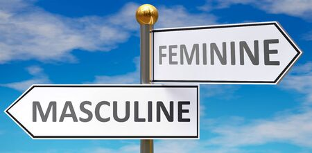 Masculine and feminine as different choices in life - pictured as words Masculine, feminine on road signs pointing at opposite ways to show that these are alternative options., 3d illustration Stok Fotoğraf