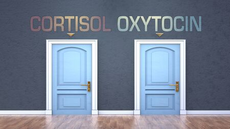 Cortisol and oxytocin as a choice - pictured as words Cortisol, oxytocin on doors to show that Cortisol and oxytocin are opposite options while making decision, 3d illustration