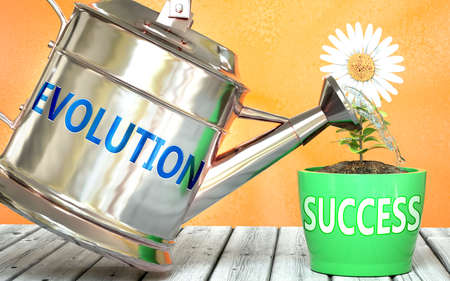 Evolution helps achieving success - pictured as word Evolution on a watering can to symbolize that Evolution makes success grow and it is essential for profit in life and business, 3d illustration Archivio Fotografico